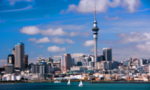 auckland-city-and-harbor-highlights-with-drop-off-AK17-01