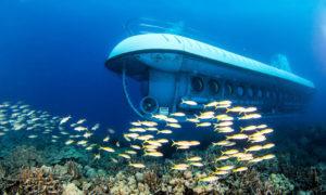 georgetown-atlantis-submarine-expedition-GC13-mosaic